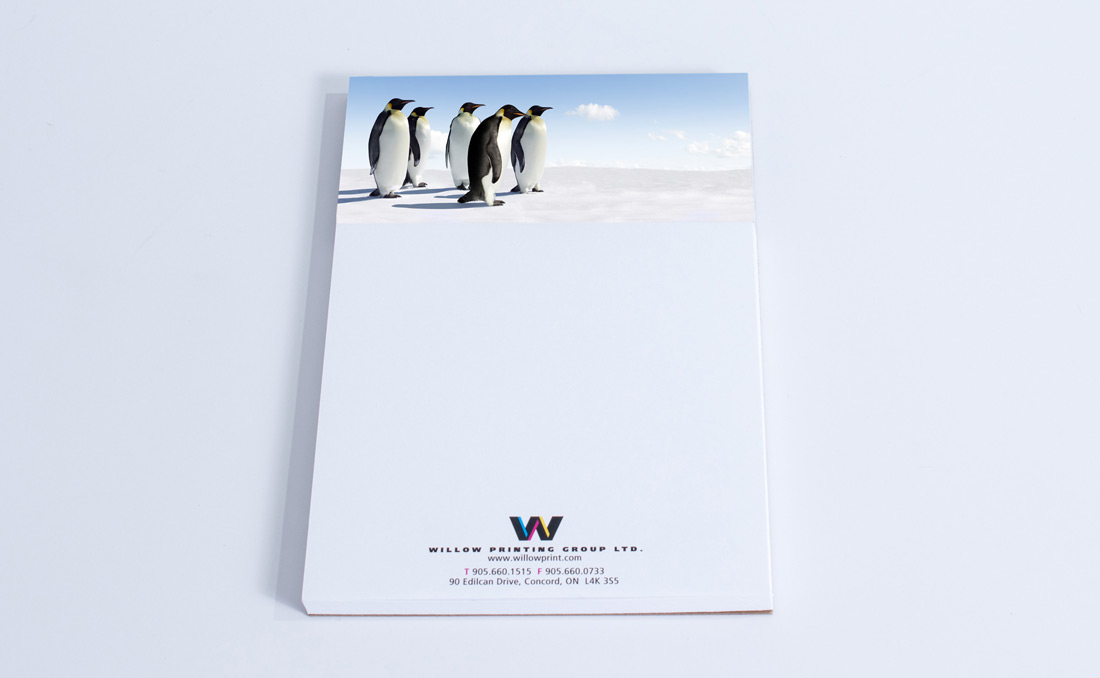 WillowPads penguins